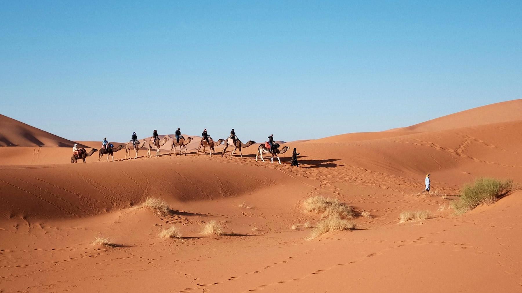 Votre Trek dans le Sahara du Maroc