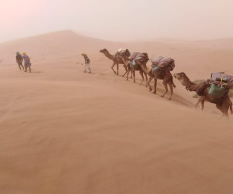 Un trek au Sahara, bivouac au coeur du désert du Maroc